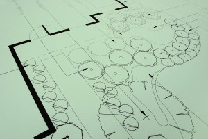 Landscaping Blueprints 1
